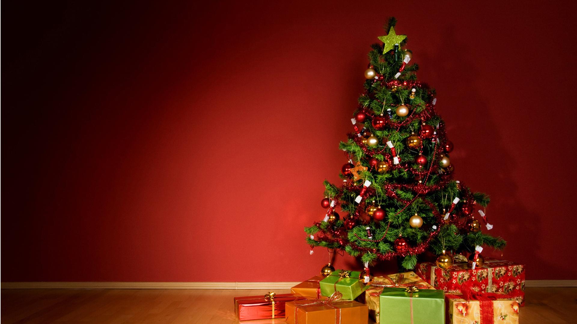 Я увидела, что у меня под окном частный дом выросла ель см  увидели во сне новогоднюю ель?